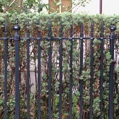 ogrodzenie-metalowe-g266